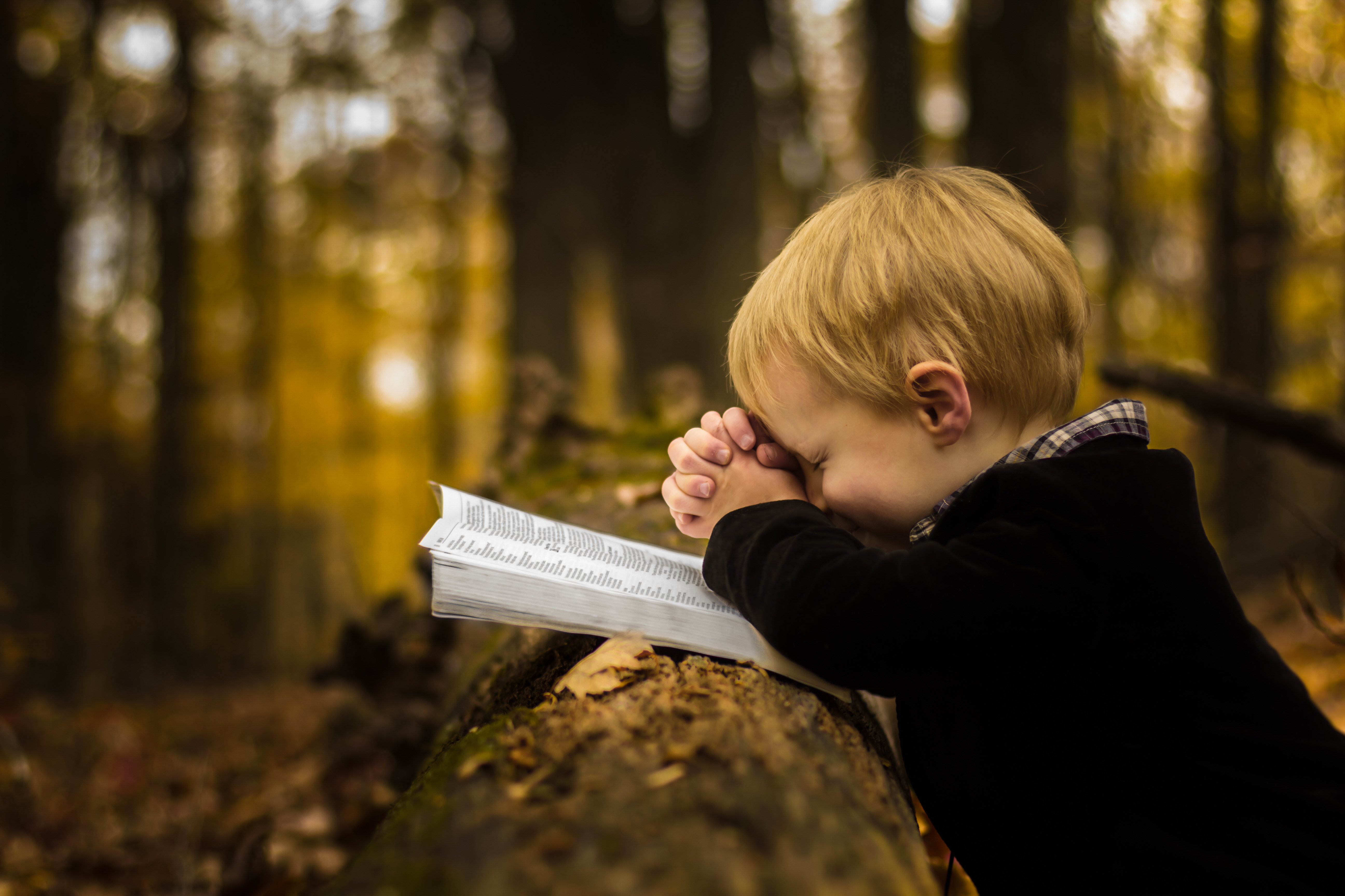 /uploads/lightstock_42850_max_boyPraying.jpg